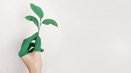 A ENA abre uma vaga para Engenharia do Ambiente