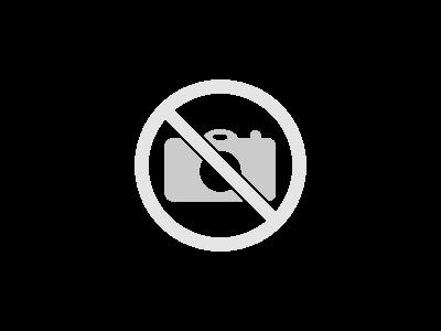 E-REDES Distribuição Elétrica
